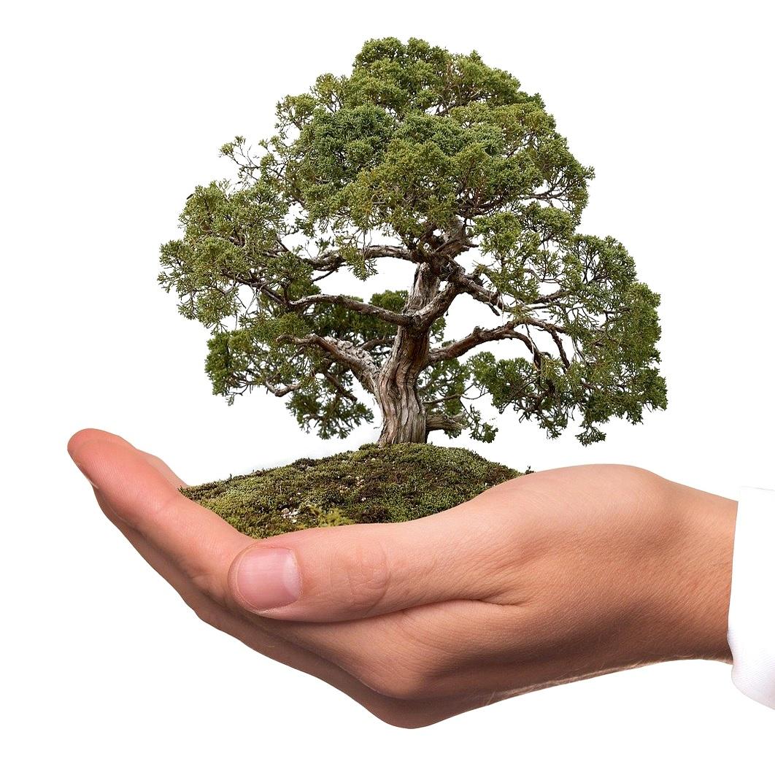 Umweltschutz Wir gehen digital